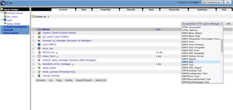 Requesting a Webrunner with ERP5 - Add an ERP5 Site