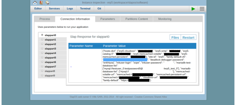 Requesting a Webrunner with ERP5 - SlapOS Webrunner Services Partition Parameters