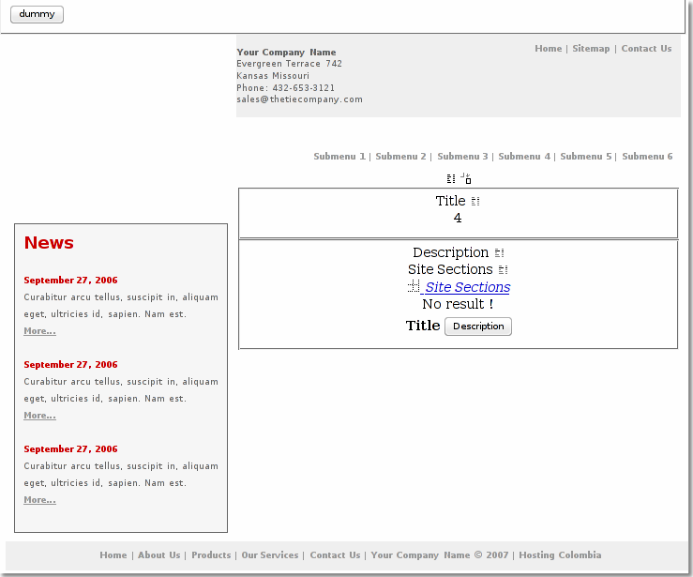 Web Site View